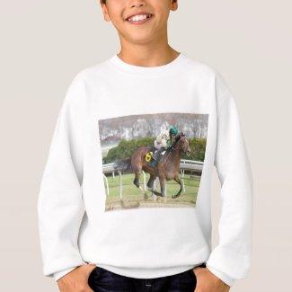 Moon Over Miami - Junior Alvarado Sweatshirt
