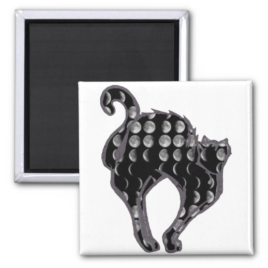 Moon Phase Kitty Magnet