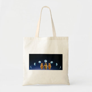 Moon Phases Goddess tote Canvas Bags
