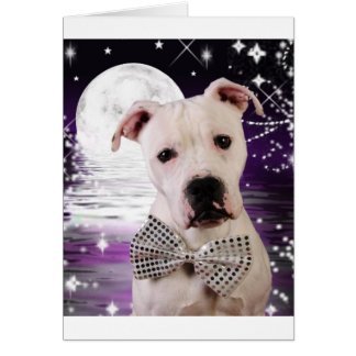 Moon puppy greeting card