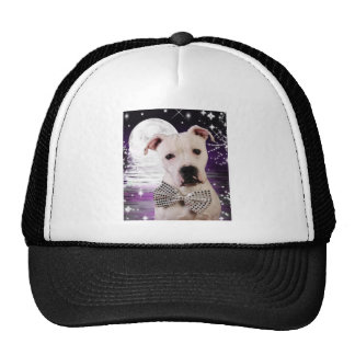 Moon puppy trucker hat