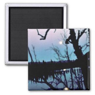 Moon Reflection on Lake Fridge Magnet