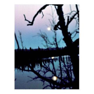 Moon Reflection on Lake Post Card