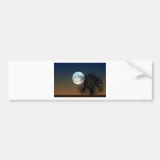 Moon Rise Car Bumper Sticker