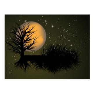 Moon Rise ~ Full Moonrise Tree & Night Sky Postcard