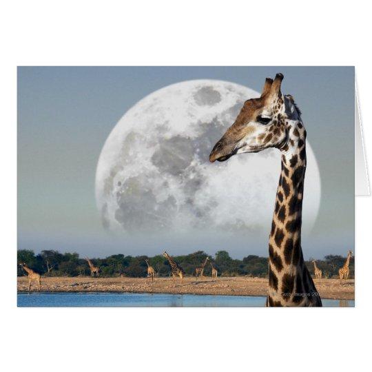 Moon rising over a group of Giraffe in Etosha Card