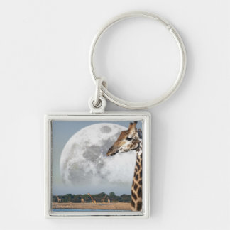 Moon rising over a group of Giraffe in Etosha Keychain