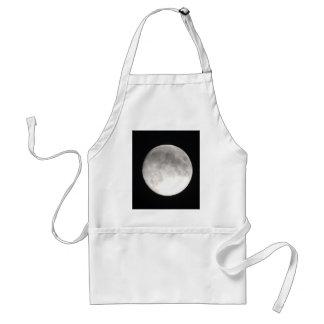 Moon satellite apron