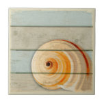 "Moon Snail Tile<br><div class=""desc"">Moon snail on distressed wood background.</div>"