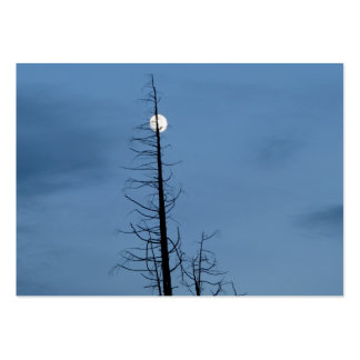 Moon Speared By Tree Business Cards