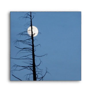 Moon Speared By Tree Envelope