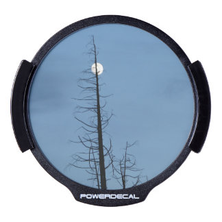 Moon Speared By Tree LED Car Window Decal