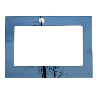 Moon Speared By Tree Magnetic Photo Frame