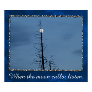 Moon Speared By Tree Poster