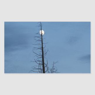 Moon Speared By Tree Rectangular Sticker