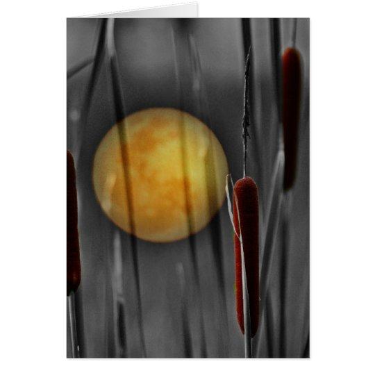 Moon Struck Card