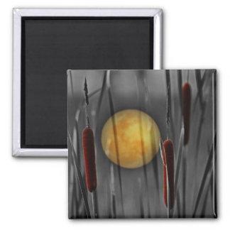 Moon Struck Fridge Magnet