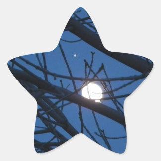 Moon throught a tree star sticker