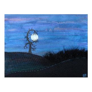 Moon Tree Postcard