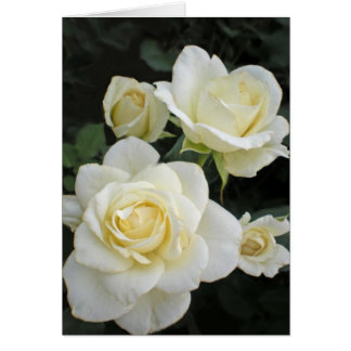 Moondance Roses Greeting Card