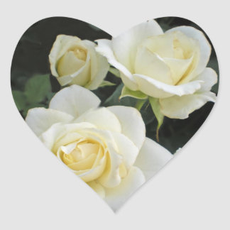 Moondance White Roses Heart Stickers