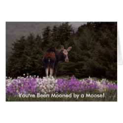Mooned by a Moose Card