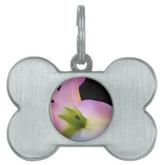 Moonflower Bloomaing Pet ID Tags