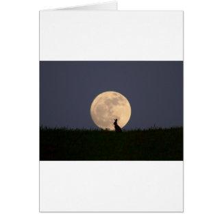 Moongazer.JPG Greeting Card