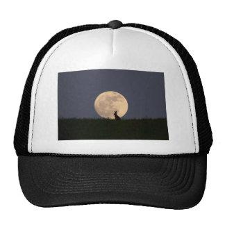Moongazer.JPG Trucker Hat
