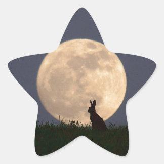 Moongazer Star Sticker