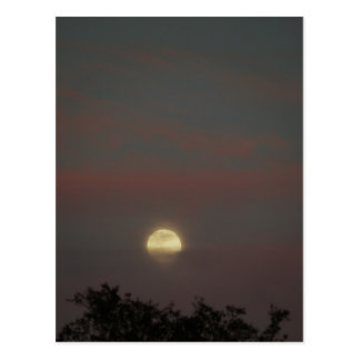 Moonglow Postcard