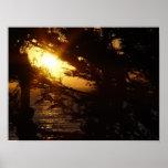 Moonlight at Moonstone Beach Poster