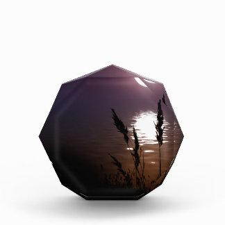 Moonlight Acrylic Award