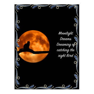 Moonlight Dreams Greeting Cards