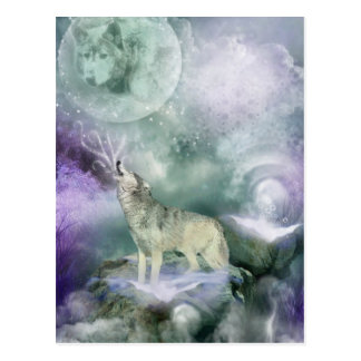 Moonlight Expression Post Card