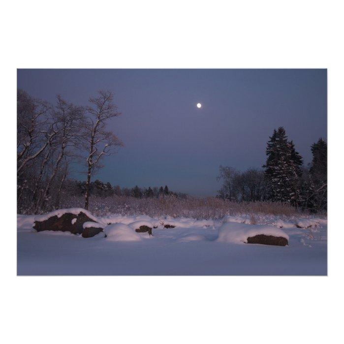 Moonlight in a midwinter seashore landscape CC0830 Photo Print