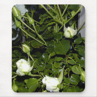 Moonlight Roses Mouse Pad