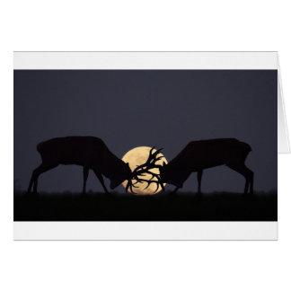 Moonlight Rut Card