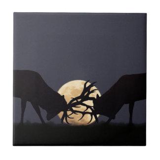 Moonlight Rut Tiles