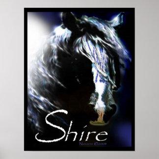 MOONLIGHT SHIRE Poster