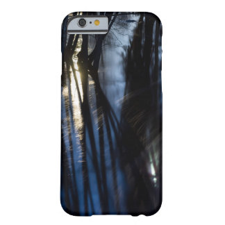 Moonlight stream barely there iPhone 6 case