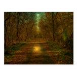 moonlight walk Lynchburg City Trails Postcard