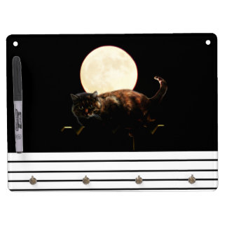 Moonlit Cat on a Fence With Full Moon Dry-Erase Boards