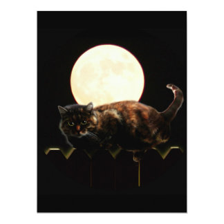 Moonlit Cat on a Fence With Full Moon Personalized Announcement
