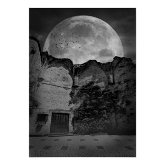 """""""Moonlit Courtyard"""" Photography Print Poster"""