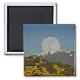 Moonrise over the Sangre de Cristo Mountains, Fridge Magnets