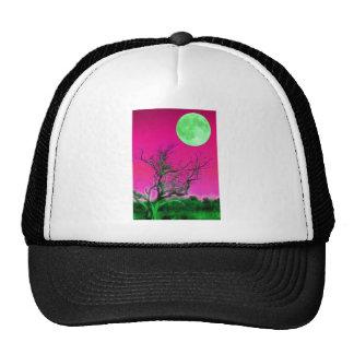 Moonrise park mesh hat