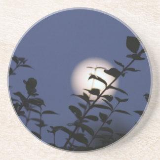 Moonrise Sandstone Coaster