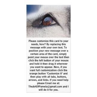 Moon's Reflection on Dog's Eye Card