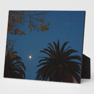 Moonscape Display Plaques
